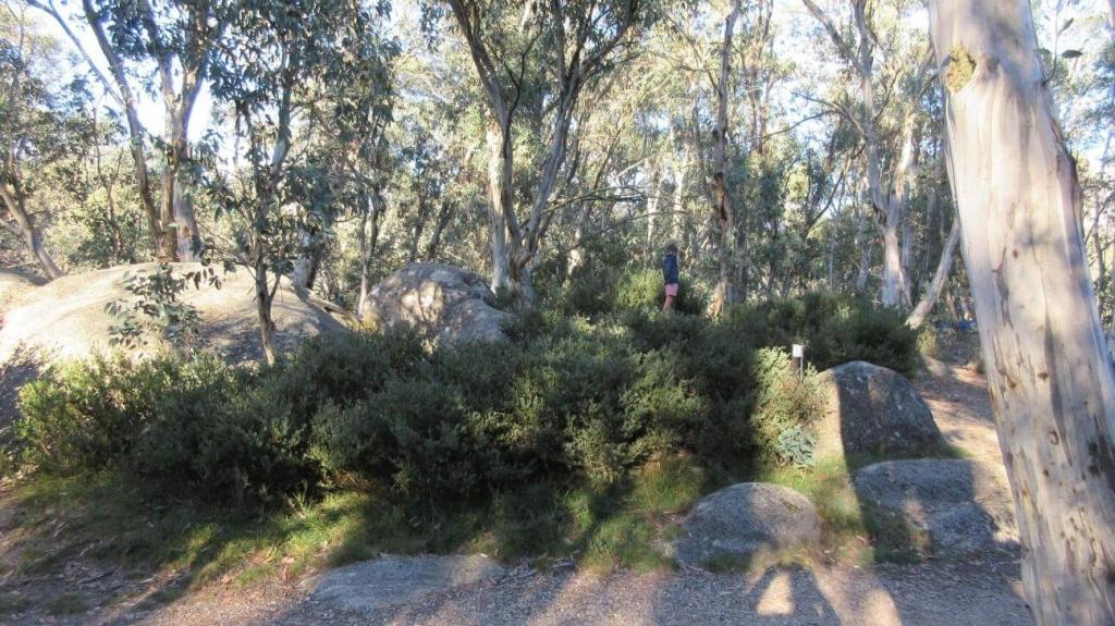 Lake Catani campground - natures playground