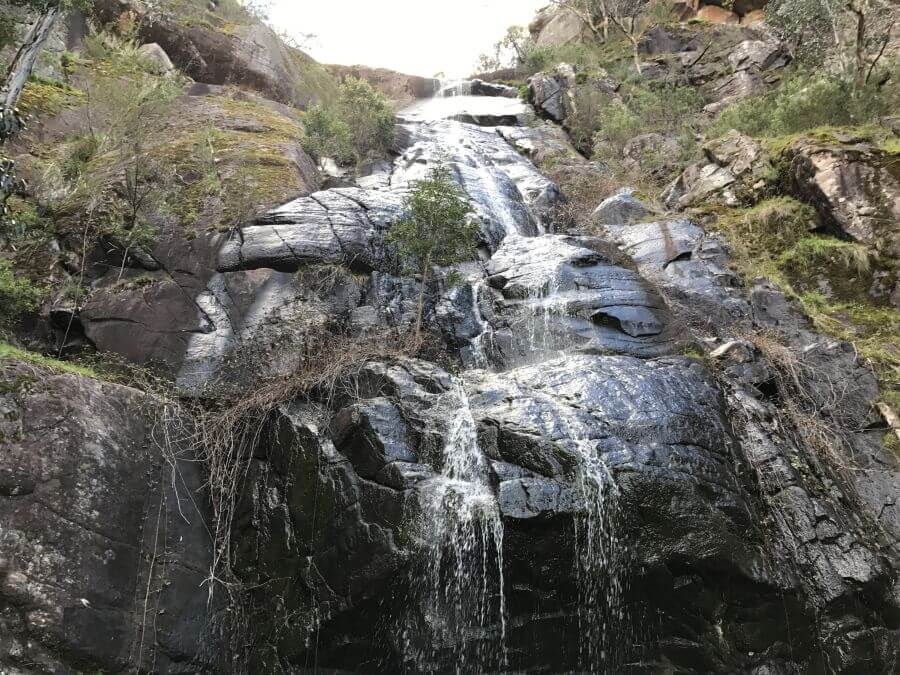 Hill Tribe Travels walked to Clematis Falls - a great walk for kids in The Grampians