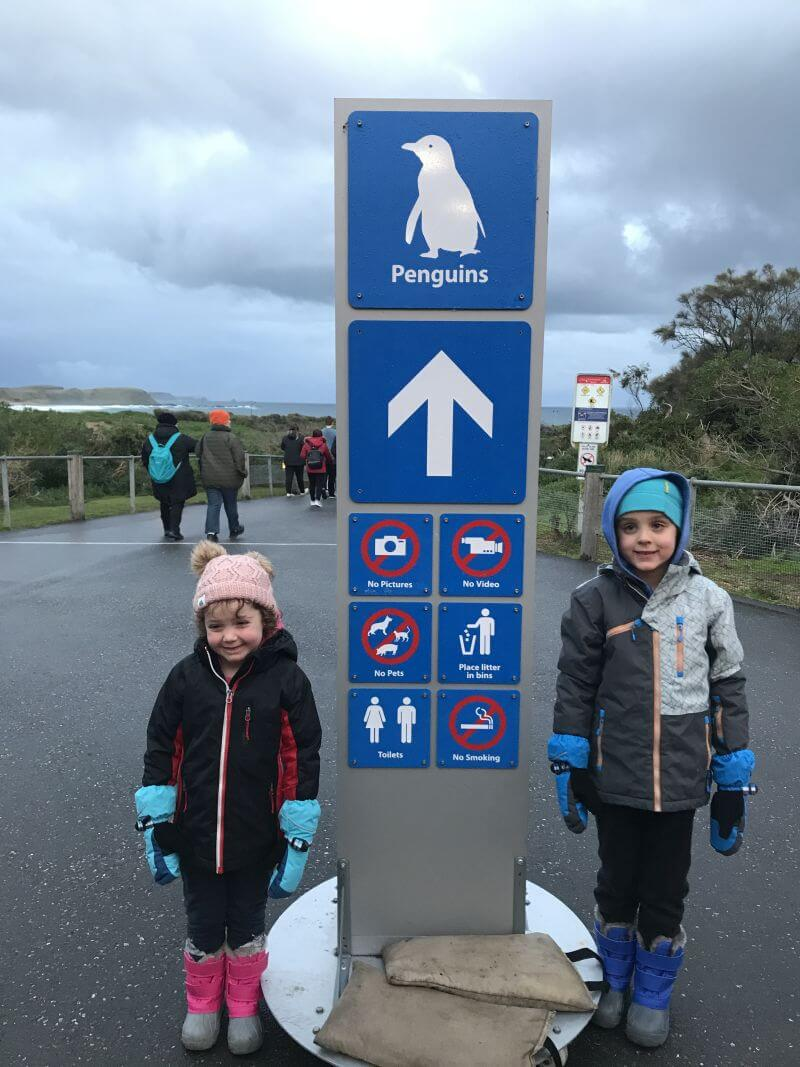 Ned and Olive from Hill Tribe Travels heading down the boardwalk to the Penguins Plus seating area. It was cold in winter. One of the fun things to do on Phillip Island with kids