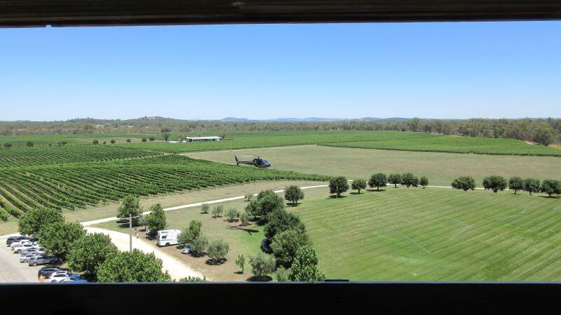 MItchelton Winery. On the way from (or to) Rutherglen wine region). Hill Tribe Travels loves visiting family friendly wineries
