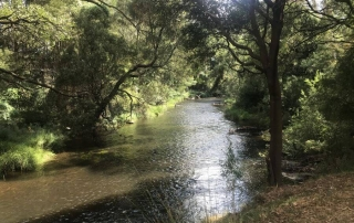 Gorgeous river flowing through Doon Reserve Caravan Park