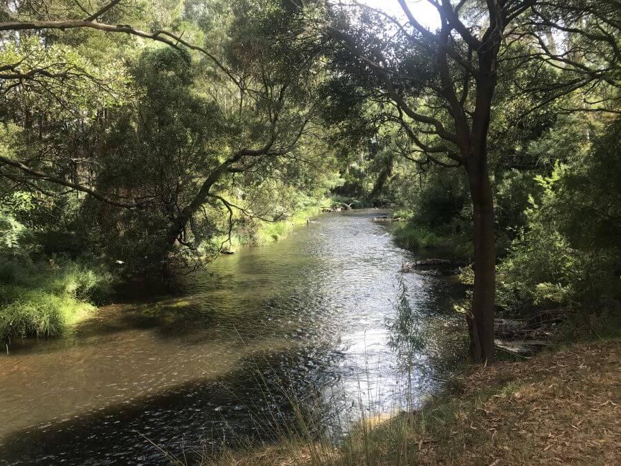 Gorgeous river flowing through Doon Reserve Caravan Park