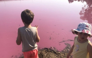 Hill Tribe Travels visited Westgate Park to see the Pink Lake in Melbourne. This is Ned and Olive standing next to the pink lake