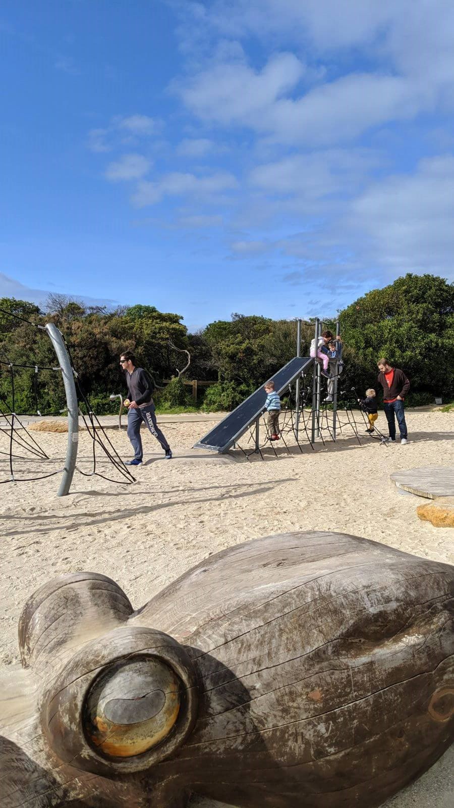 """Whale Playground"" in Anglesea"