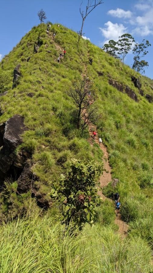 You can see here how steep the path between peaks is at the top of Little Adams Peak Ella Sri Lanka