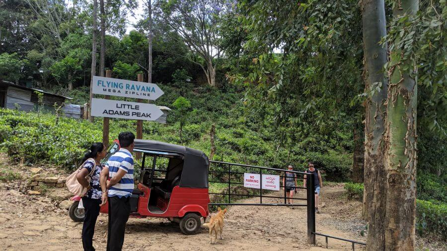 The walk to Little Adam Peak is now well sign posted. Ella Sri Lanka is a good place to visit with kids. Well signposted walk