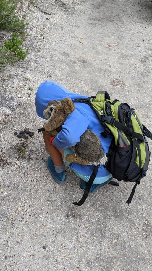 Kids hiking backpacks