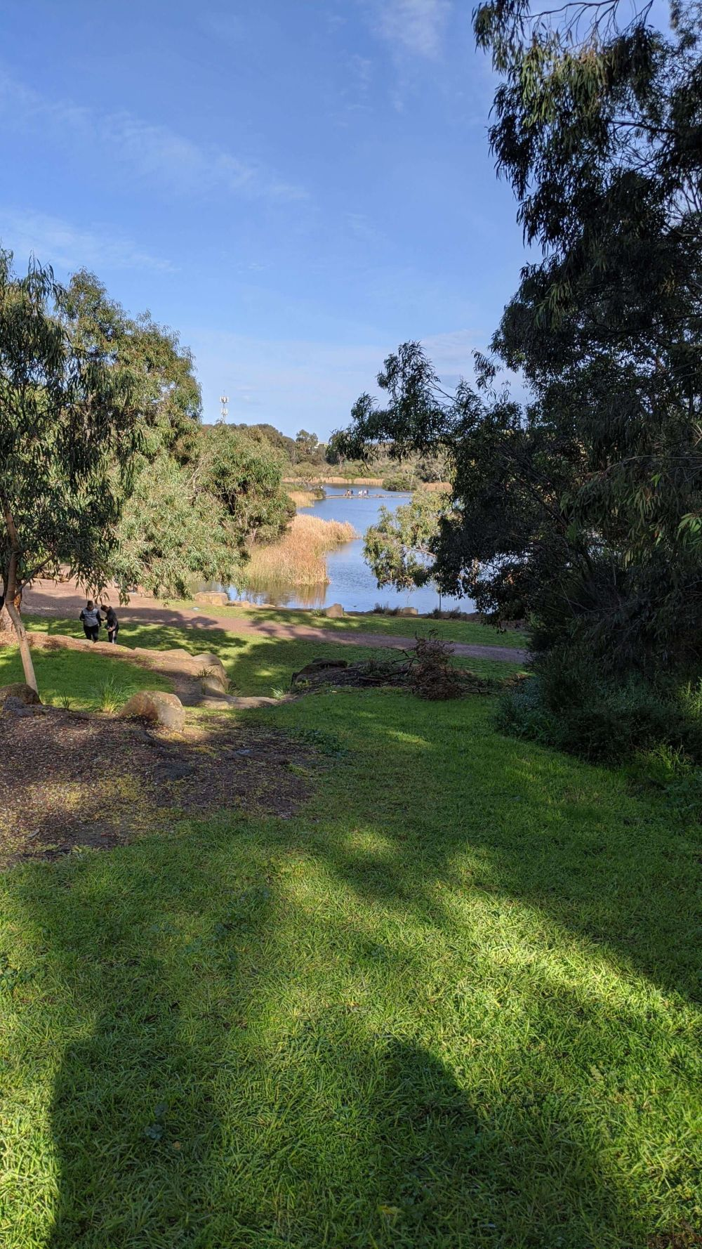Newport Lakes bush setting with 2 lakes. Plenty of grassy picnic space. Hill Tribe Travels visited Newport Lakes