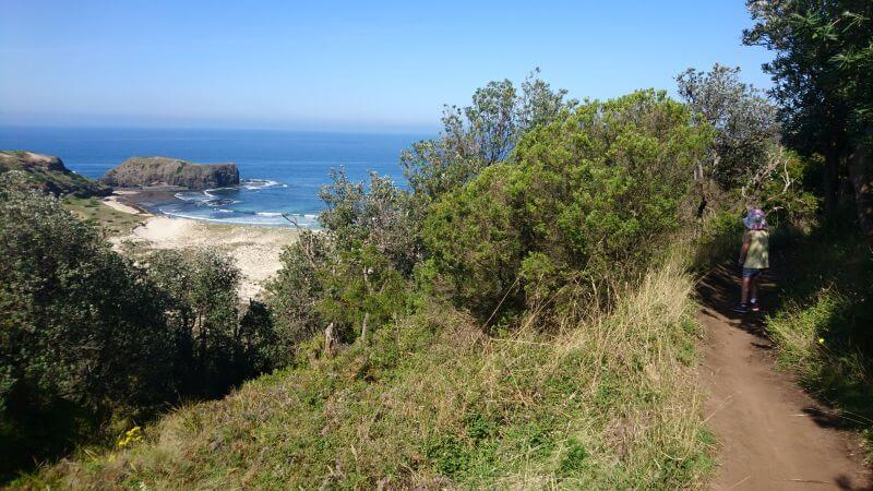 Hiking with kids. Victorian hikes with kids. Family hikes. Hill Tribe Travels visited the Bushrangers bay rockpools with kids and loved it. Here is the bushrangers bay walking track and a view of the beach and big rock