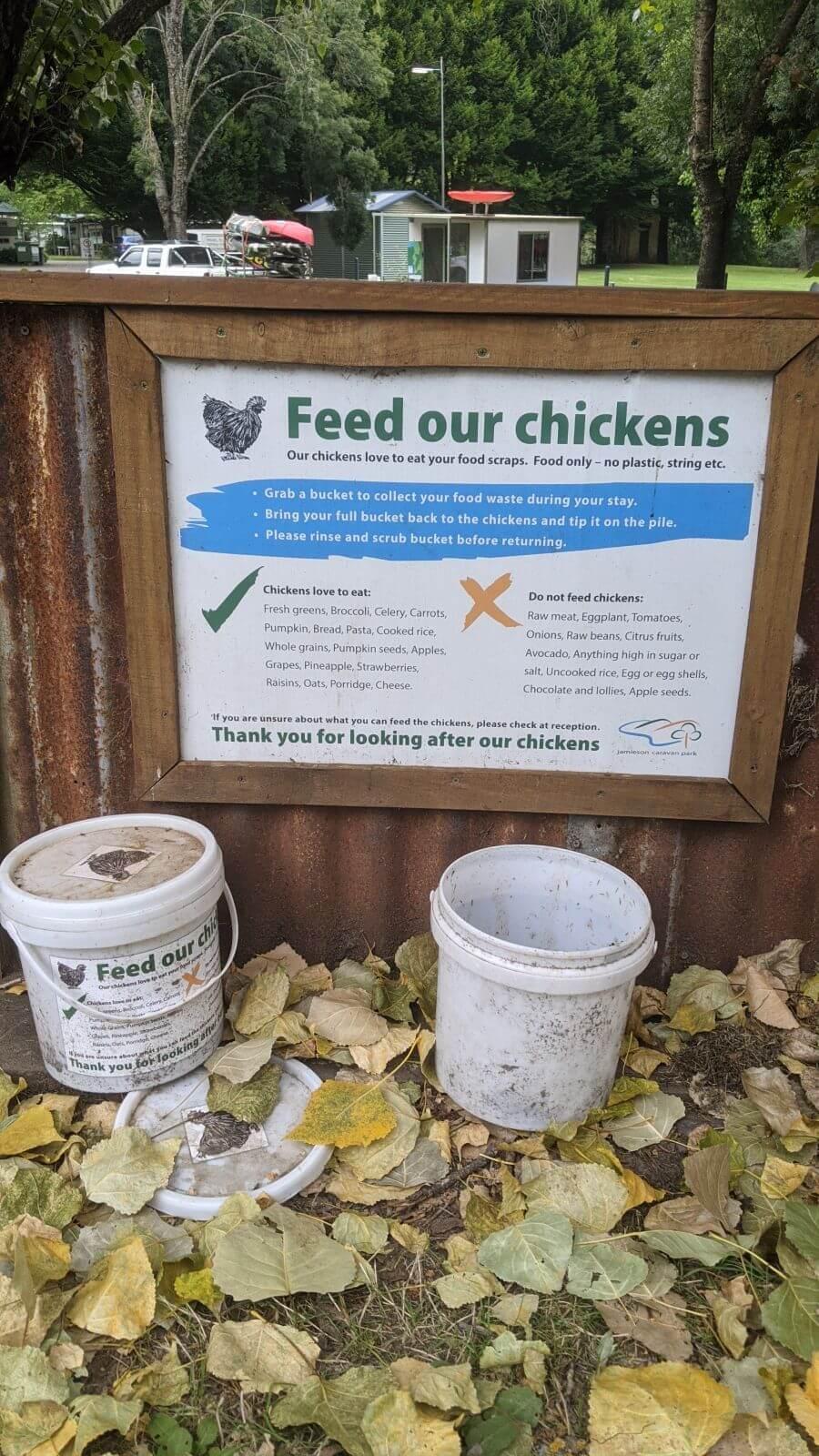 Chicken feeding buckets at Jamieson Caravan Park